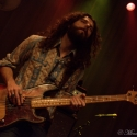 Sheepdogs_010