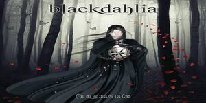 blackdahlia_cover