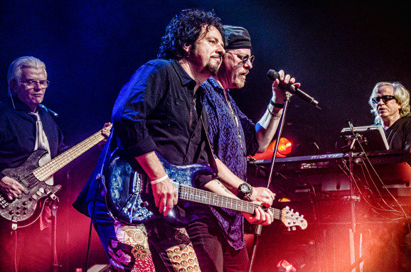 Toto_live_featureimage