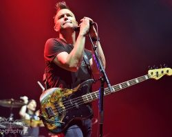 2745390077 Blink 182 - Motorpoint Arena, support from The Front Bottoms and Frank Turner & The Sleeping Souls