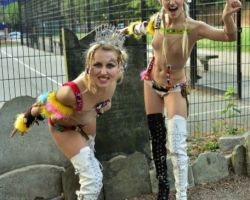 1321533714 Try the fish (eye)..... An evening with The SoapGirls